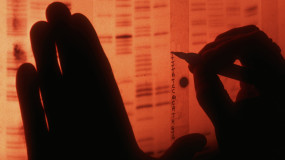 Scientist Labels a Sequence of DNA Base Pairs from Radiograph