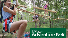 Enter to Win Tickets to The Adventure Park at Storrs!